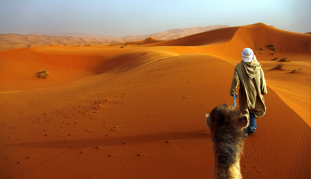 What are the challenges for the Caravans on the Trans Saharan ...
